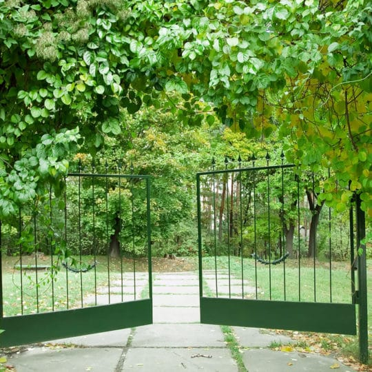 Home Gate Design Inspiration