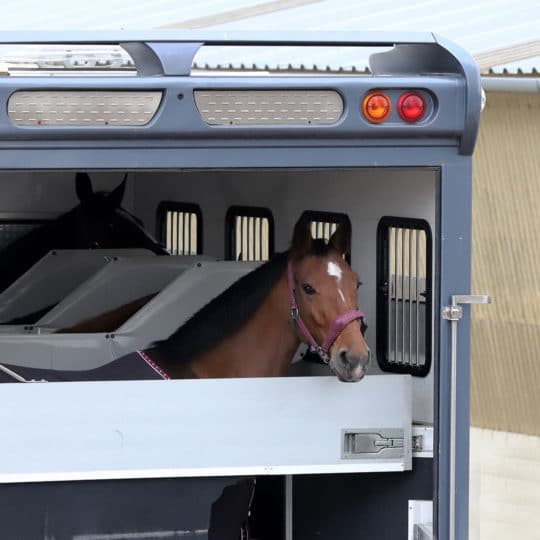Equine Monitoring Travel Tips
